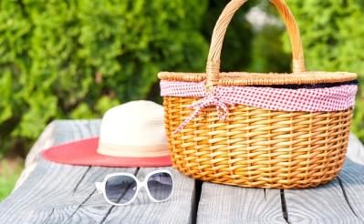 vegnews-picnic2